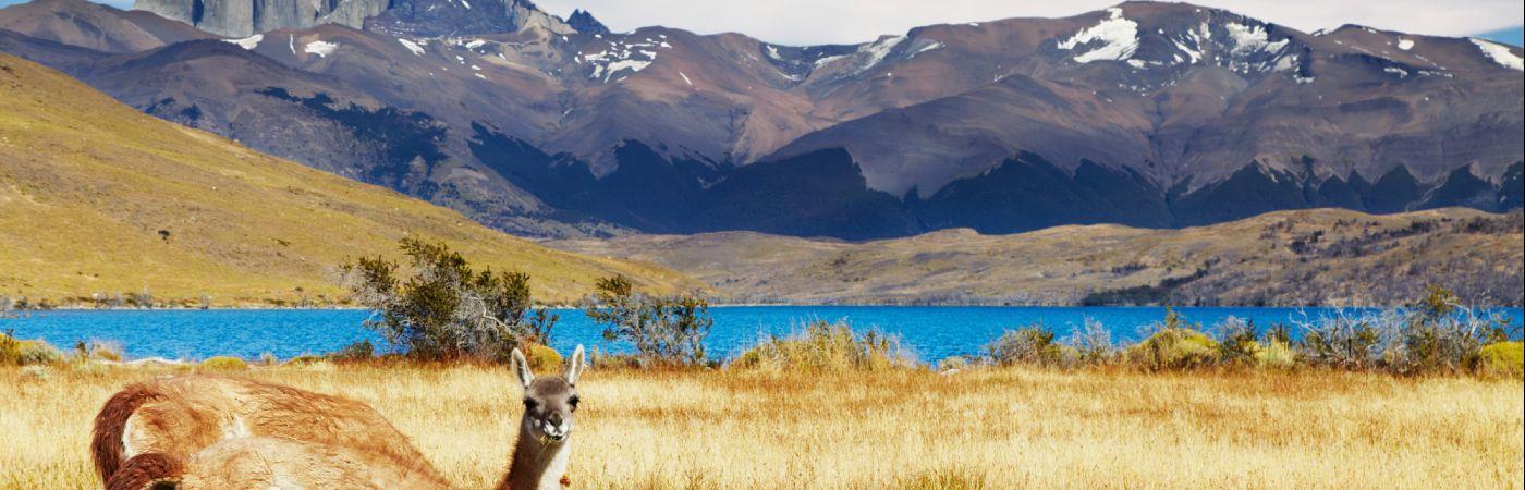 Parc national de Torres del Paine