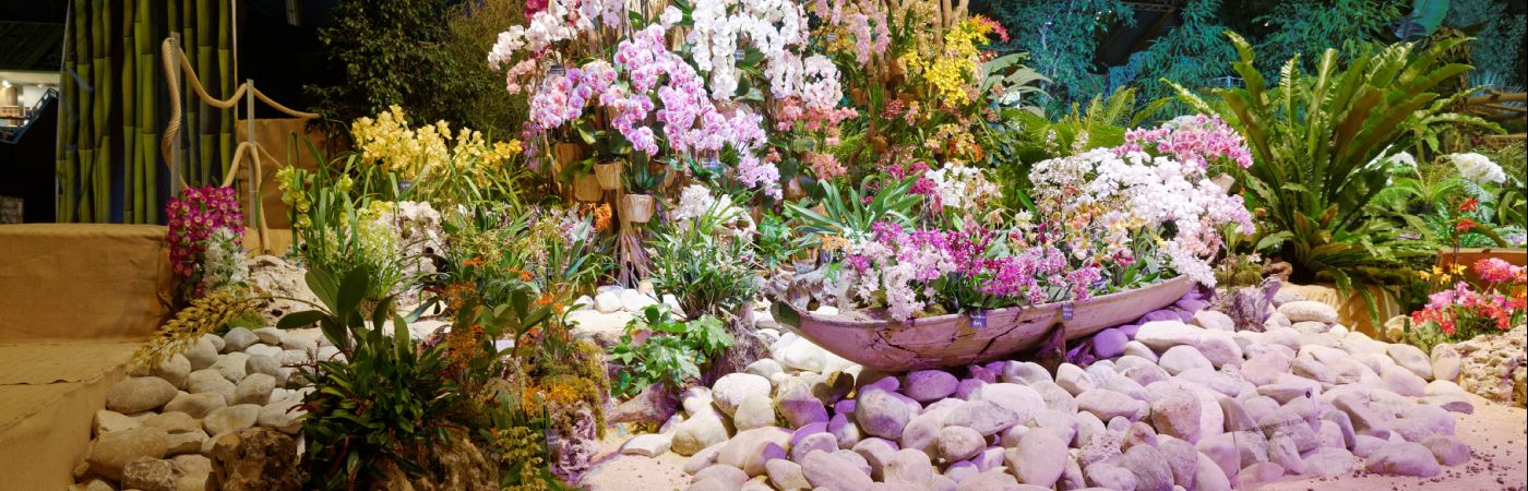 Exposition Florissimo à Dijon